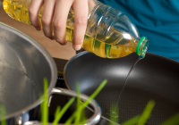 Alternatives to vegetable oil