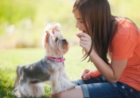 Chicken Soup for the Soul: It's Not Always about the Dog