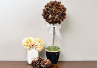 DIY: Make a pretty pine cone topiary