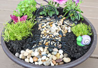 How to make a backyard fairy garden