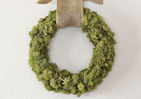 How to make a moss-covered wreath for St. Patrick's Day