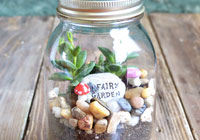 How to make a terrarium in a Mason jar