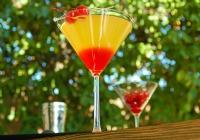The Bikini Martini