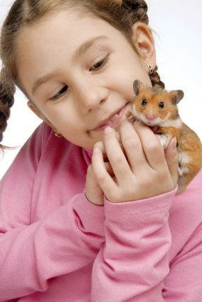 Child and hamster