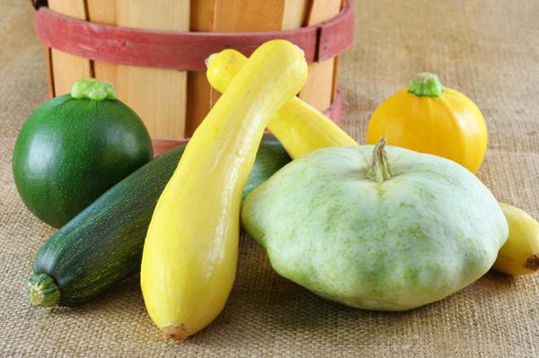 Variety of summer squash