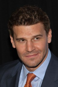 David Boreanaz is in trouble