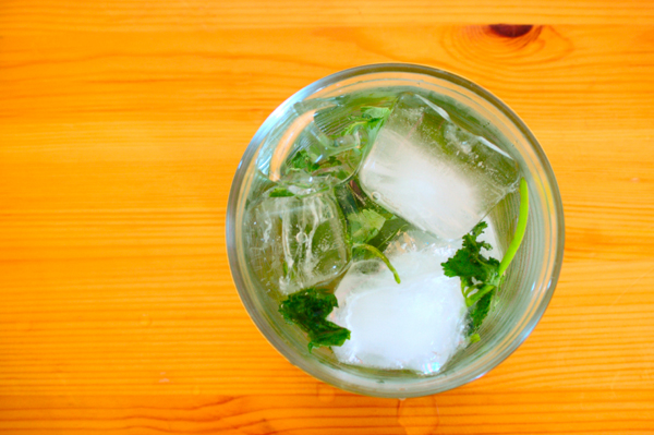 Mint Herbed Cocktail