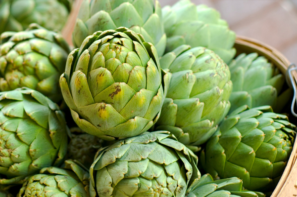 Summer artichoke