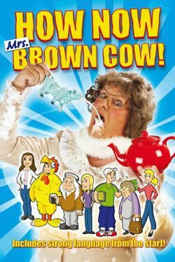 mrs browns boys poster