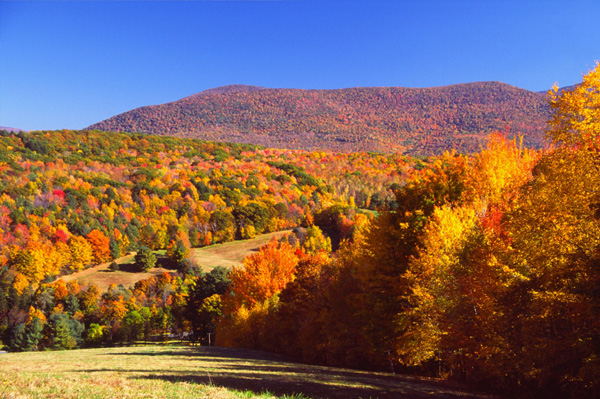 The Berkshires in Fall