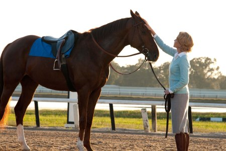 Diane Lane stars in Secretariat