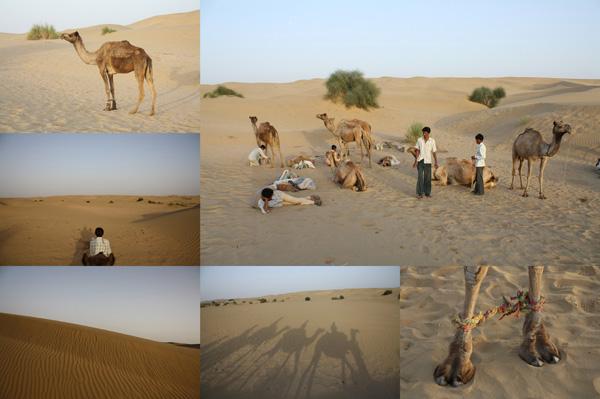 A journey into India's Thar Desert