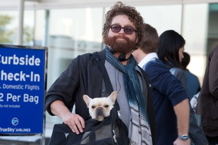 Zach Galifianakis in Due Date