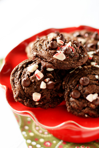 Chocolate peppermint holiday cookies