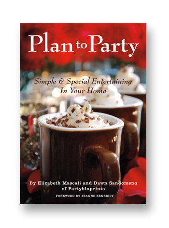 Plan to Party Book Cover