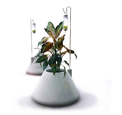 iv planters