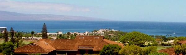 Affordable aloha