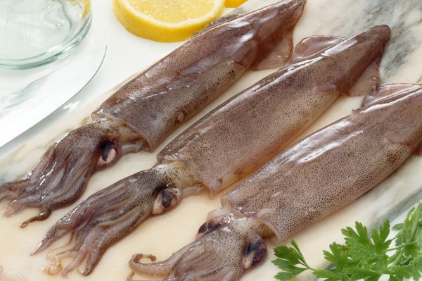 Homemade calamari and more