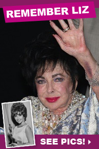 Photo tribute to Elizabeth Taylor