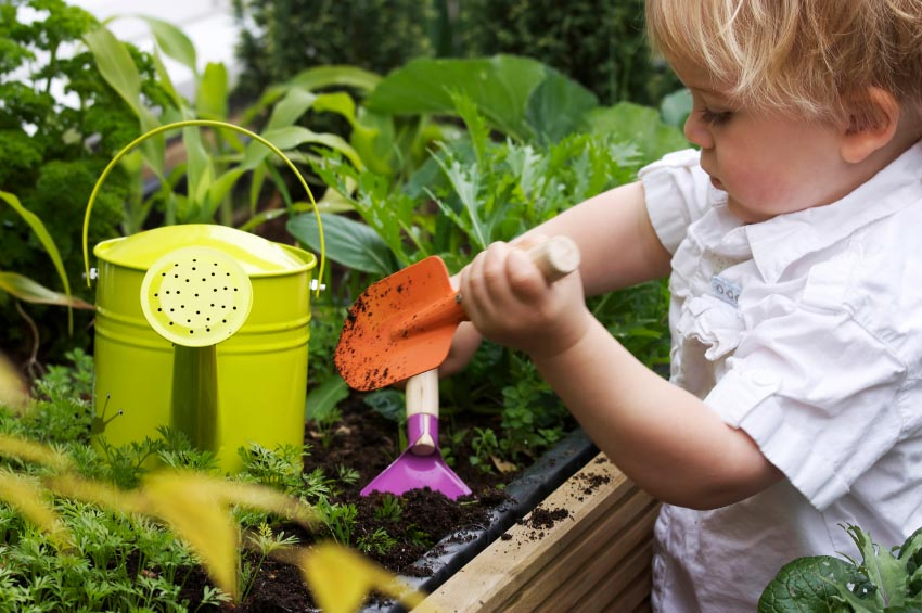 Kid friendly gardening projects for Fun vegetable garden ideas