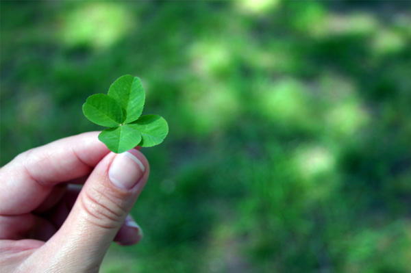 Plant shamrocks on St. Patrick's Day