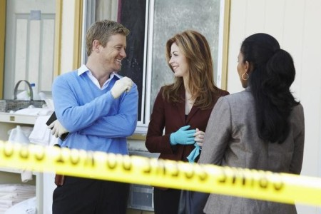 Dana Delany stars in Body of Proof