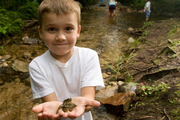 Little boy holding frog