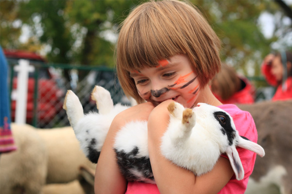 Little girl at petting zoo