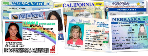Drivers licenses