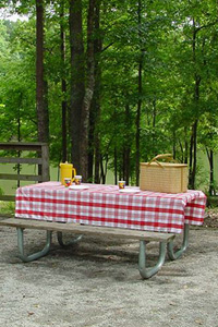 Camping in the South