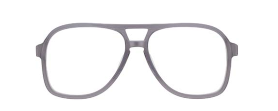 MOSCOT TERRY LE aviators Grey