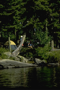 Voyageur State Park