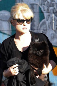 Kelly Osbourne and her dog Noodles