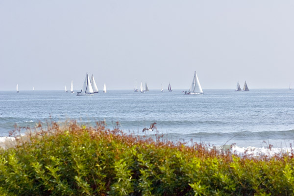 Sailboats on the Gulf of Mexico viewed from a Texas beach