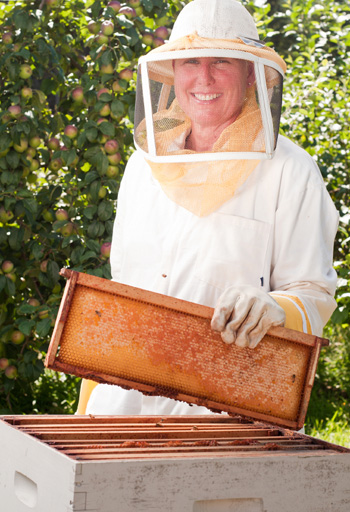 The beekeeping trend