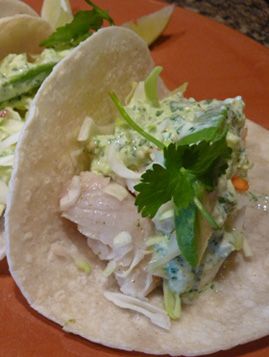Fish Taco White Sauce on Honey Lime Fish Tacos With A Creamy Tomatillo Sauce