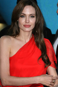 Angelina: 'They wouldn't stop!'