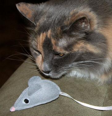 Как сделать мышку для котят