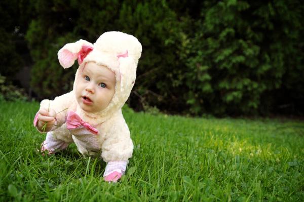 Homemade lamb costume
