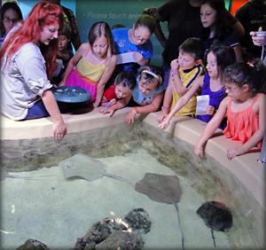 5 Fantastic Florida Aquariums Page 4