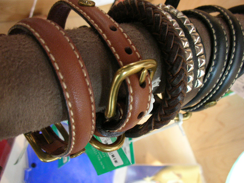 belt collar