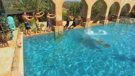 just keep swimming jake pavelka!