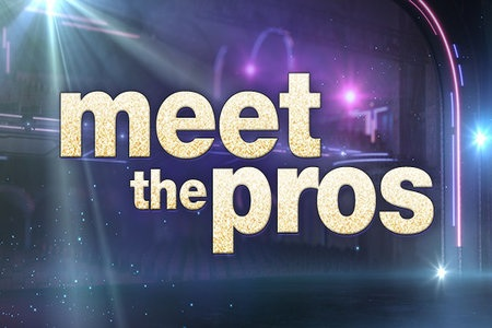 dwts: meet the pros and pairs!