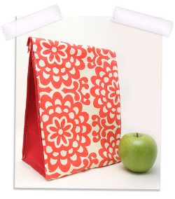 Back to school eco insulated lunch bag