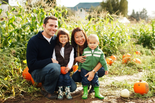 Family picking pumpkins