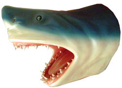 Shark Head Wall Decor