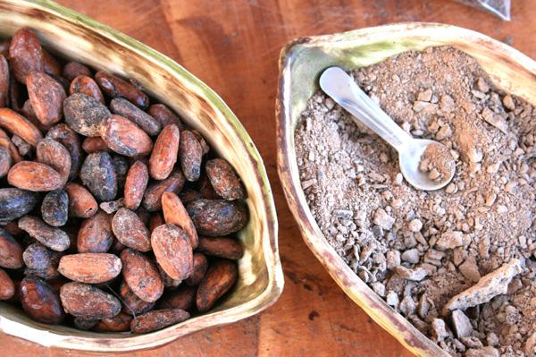 Cocoa beans nad cocoa powder