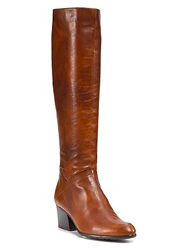 Stuart Weitzman Standard Riding Boot