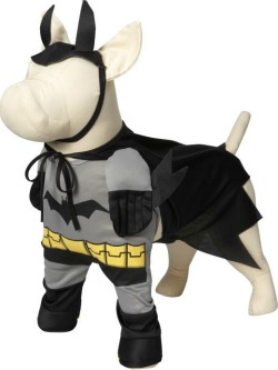 Batman Halloween dog costume