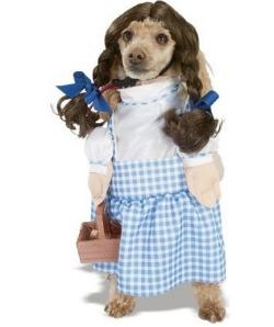 Dorothy Halloween dog costume